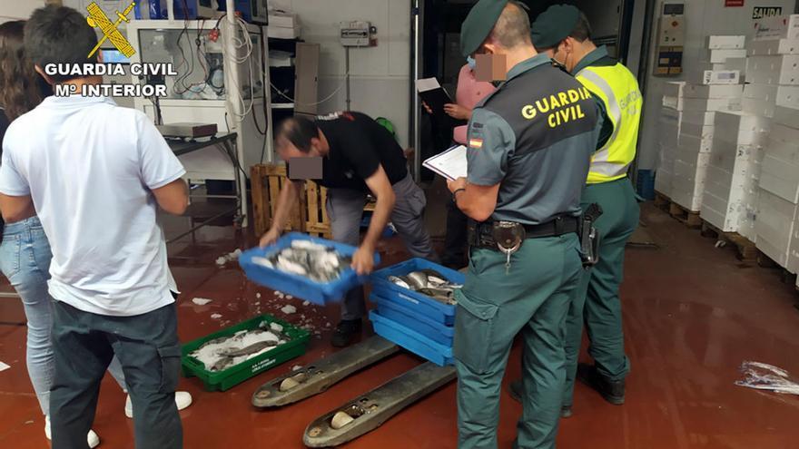 Sorprendido un vecino de Cartagena con más de 50 kilos de doradas capturadas ilícitamente