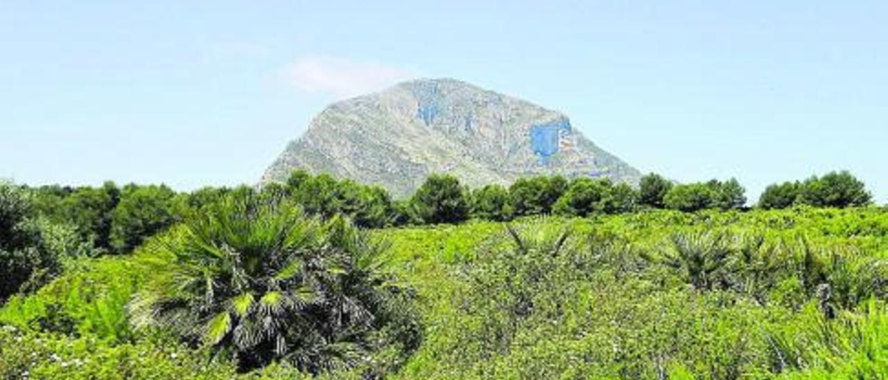 La cara sur del Montgó; destaca la Cova Gran, una suerte de gran ojo.    LEVANTE-EMV
