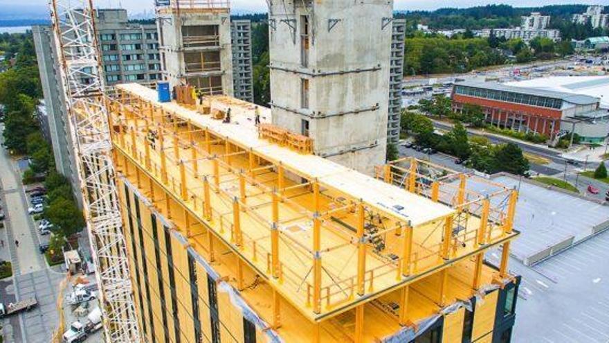 Volver a la madera para construir edificios: nuevo objetivo de la ciencia