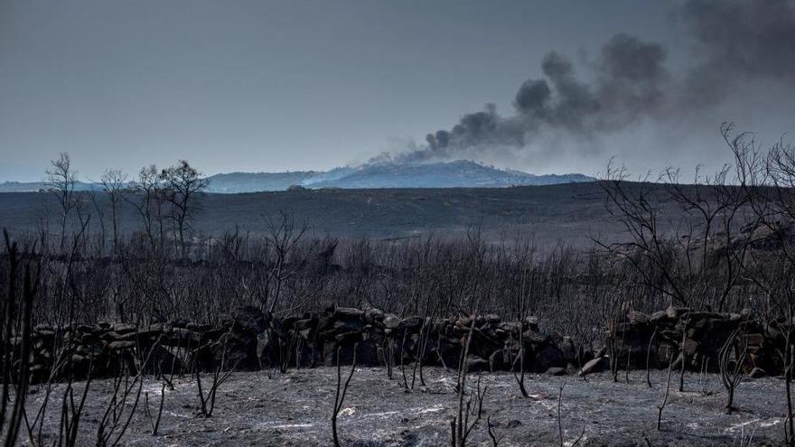 """Los vecinos de Ourense, al límite por los incendios: """"No se cobró una vida de milagro"""""""