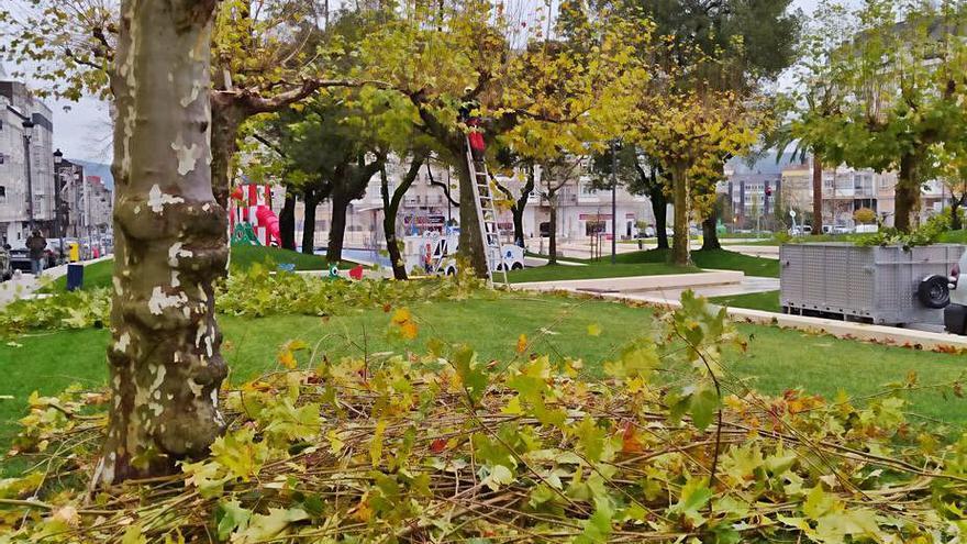 Podas de otoño en la alameda de A Estrada
