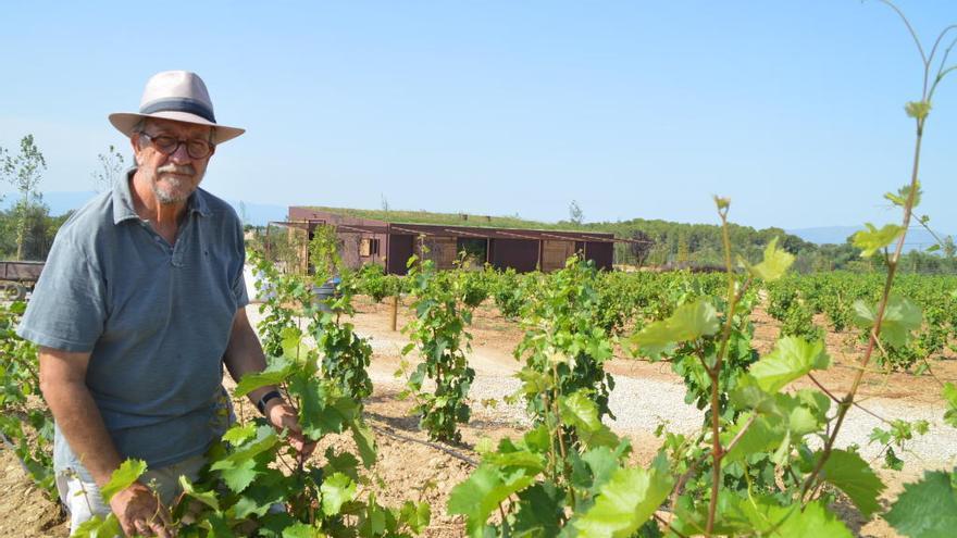 Vins de Taller obre un nou celler integrat en el paisatge de Siurana d'Empordà