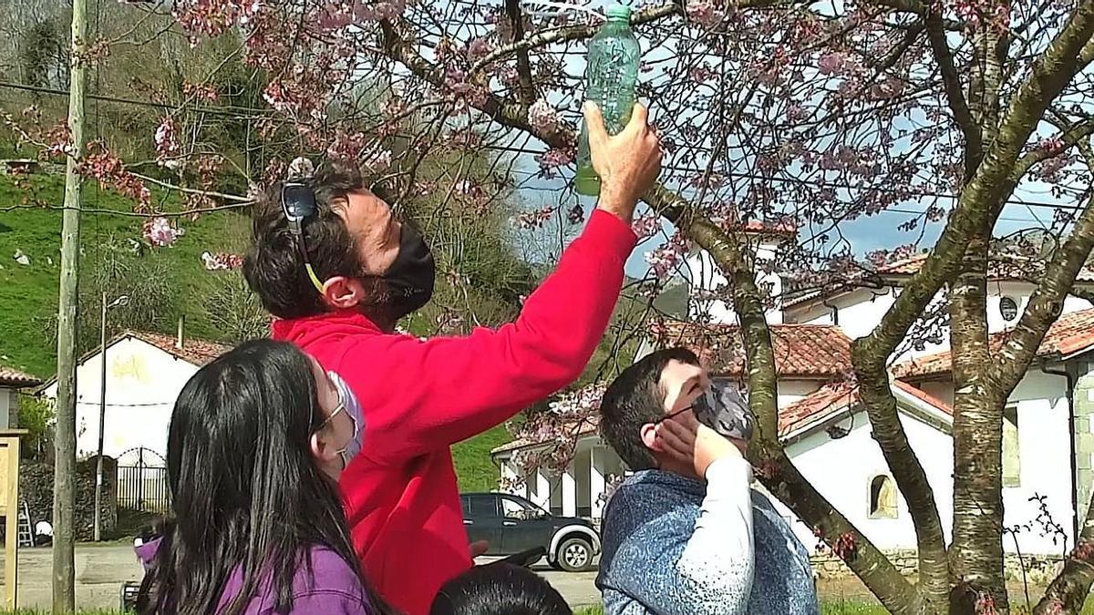 El profesor Alejandro Vilarnovo, con alumnos, observando un árbol.| R. E. S. R.