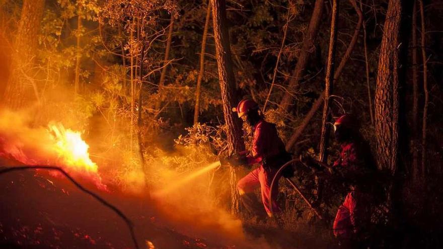 Solo 8 incendios arrasaron 11.000 hectáreas, la mitad de lo quemado en 2016