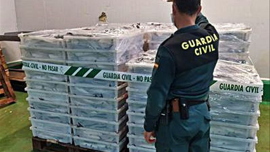 La Guardia Civil decomisa 8.000 kilos de caballa en A Mariña