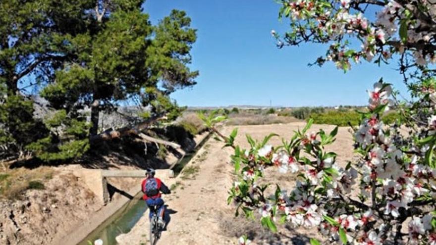 Ruta cicloturística: Granja de Rocamora - Parque Natural El Hondo