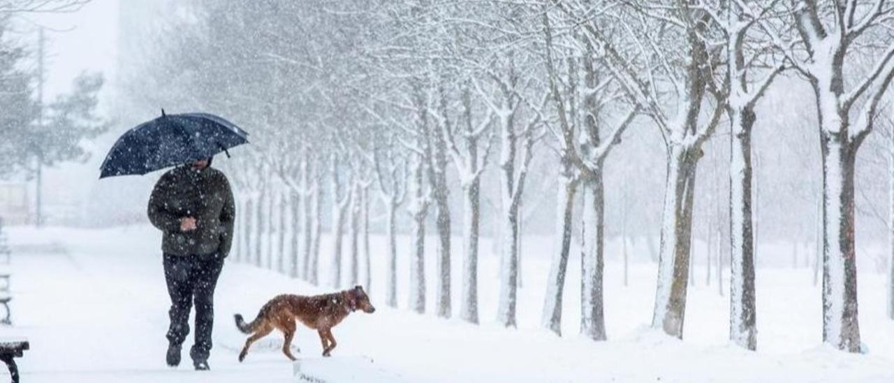 SUBE TU FOTO - Envíanos una instantánea de las nevadas de estos días.