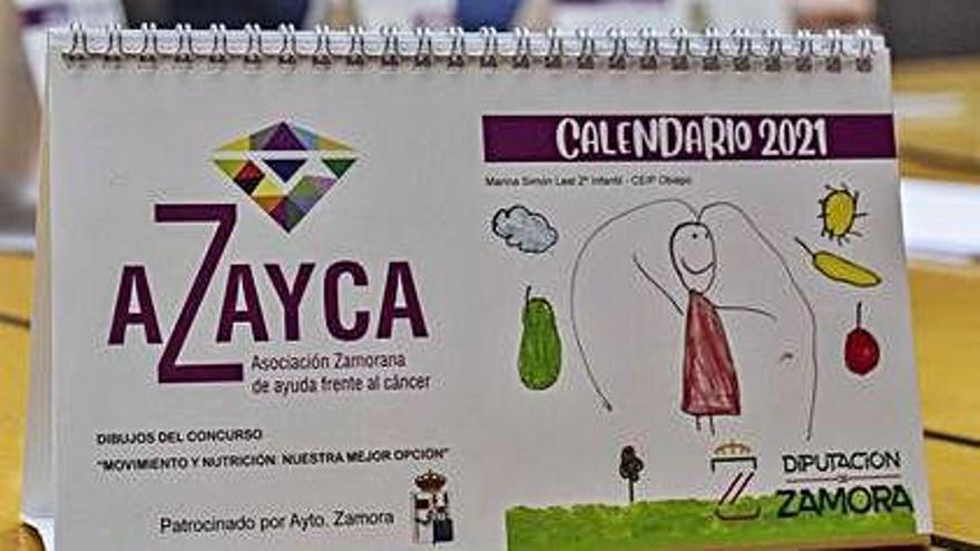 Alumnos de siete colegios de Zamora ilustran el calendario de Azayca