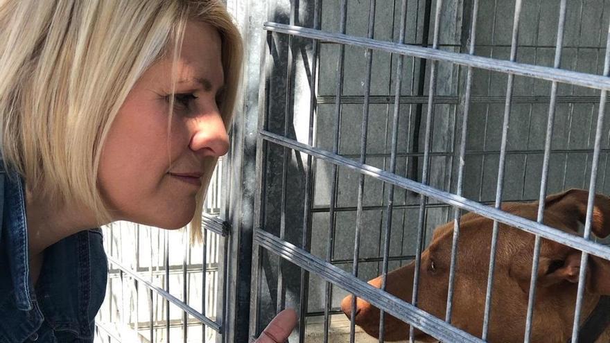 """Pacma critica las """"pésimas condiciones"""" en las que se encuentran los animales de la perrera"""