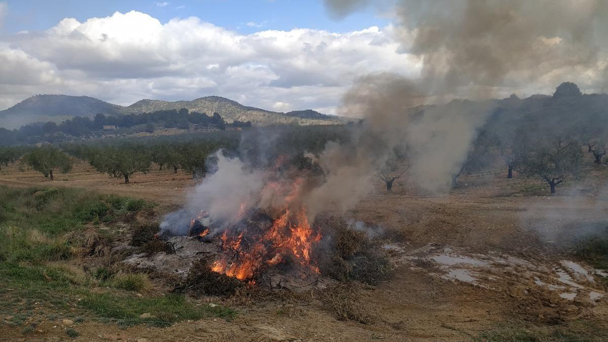 La Comunidad deberá autorizar de forma individual cada quema agrícola