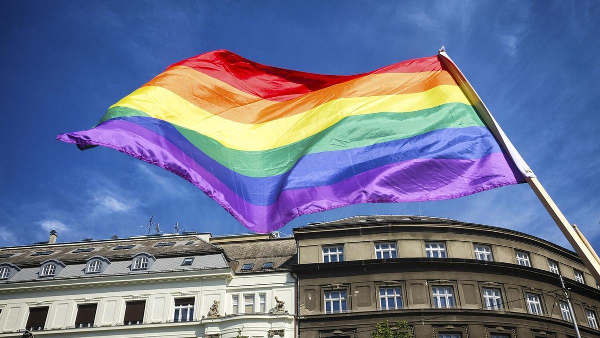 La bandera del col·lectiu LGBTI
