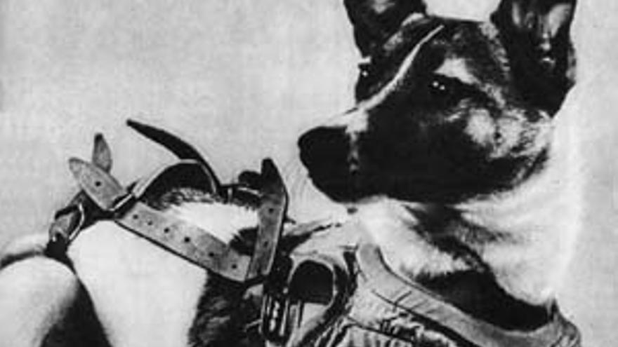 Laika: la increíble historia de la perra enviada a morir al espacio