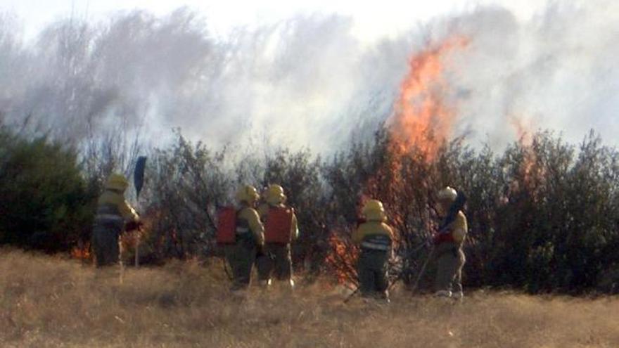 Castilla y León, en alarma por riesgo de incendios forestales