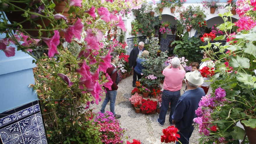 El Ayuntamiento de Córdoba descarta admitir a los patios excluidos en el concurso
