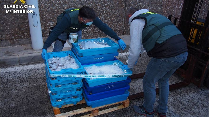 Decomisan 110 kilos de pescado inmaduro en el puerto de Altea