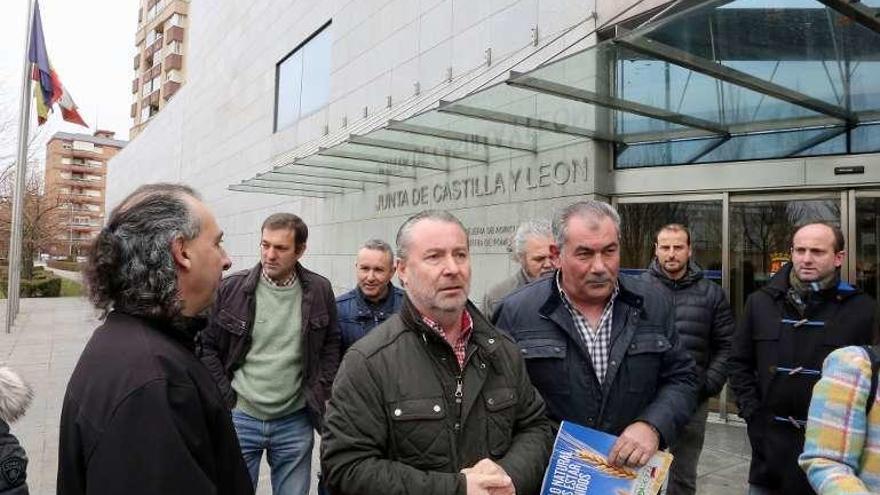 Ganaderos de ovino se manifestarán mañana en Valladolid