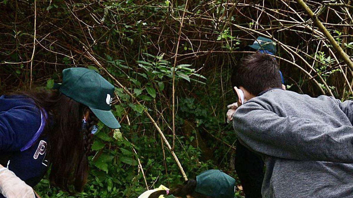 Tres jovenes colaboran para sacar basura del río.