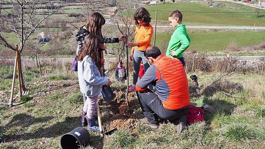 El Parc Natural del Cadí porta la Festa de l'Arbre a les escoles del territori