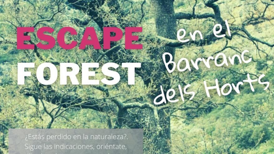 Escape forest