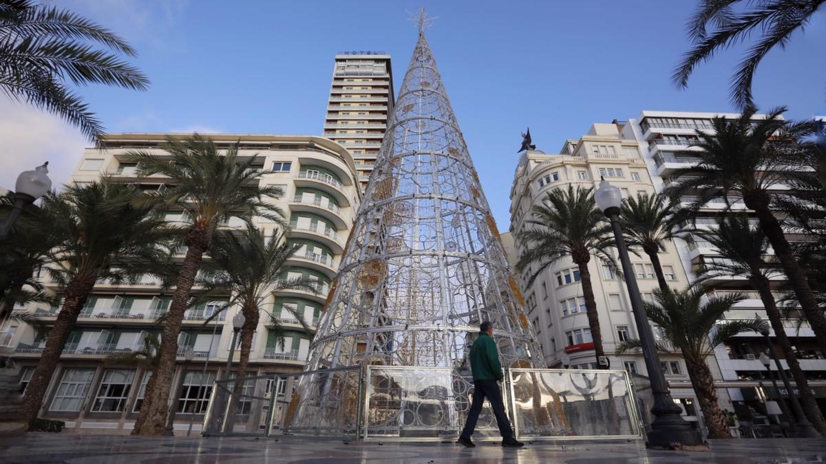El árbol de Navidad de Alicante, por primera vez en la Explanada