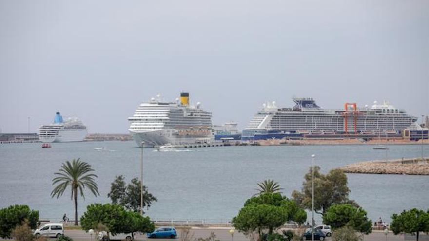 Palma erwartet 60.000 Kreuzfahrt-Touristen innerhalb einer Woche