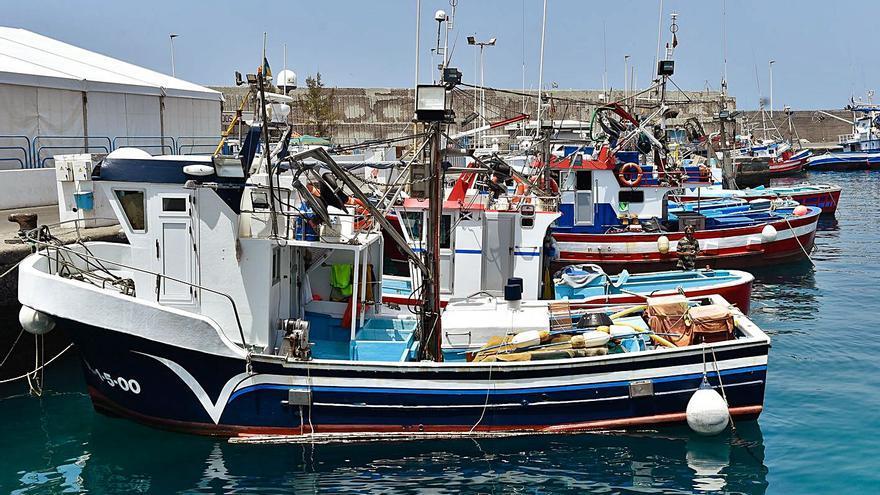 Alerta por la llegada de atuneros vascos a aguas canarias