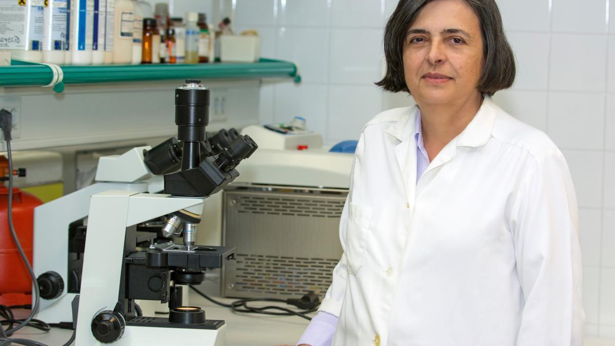 La profesora María Teresa Tejedor.