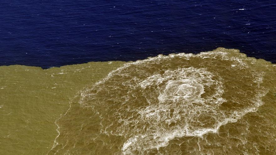 El volcán submarino 'Tagoro' modificó la comunidad de zooplancton en El Hierro