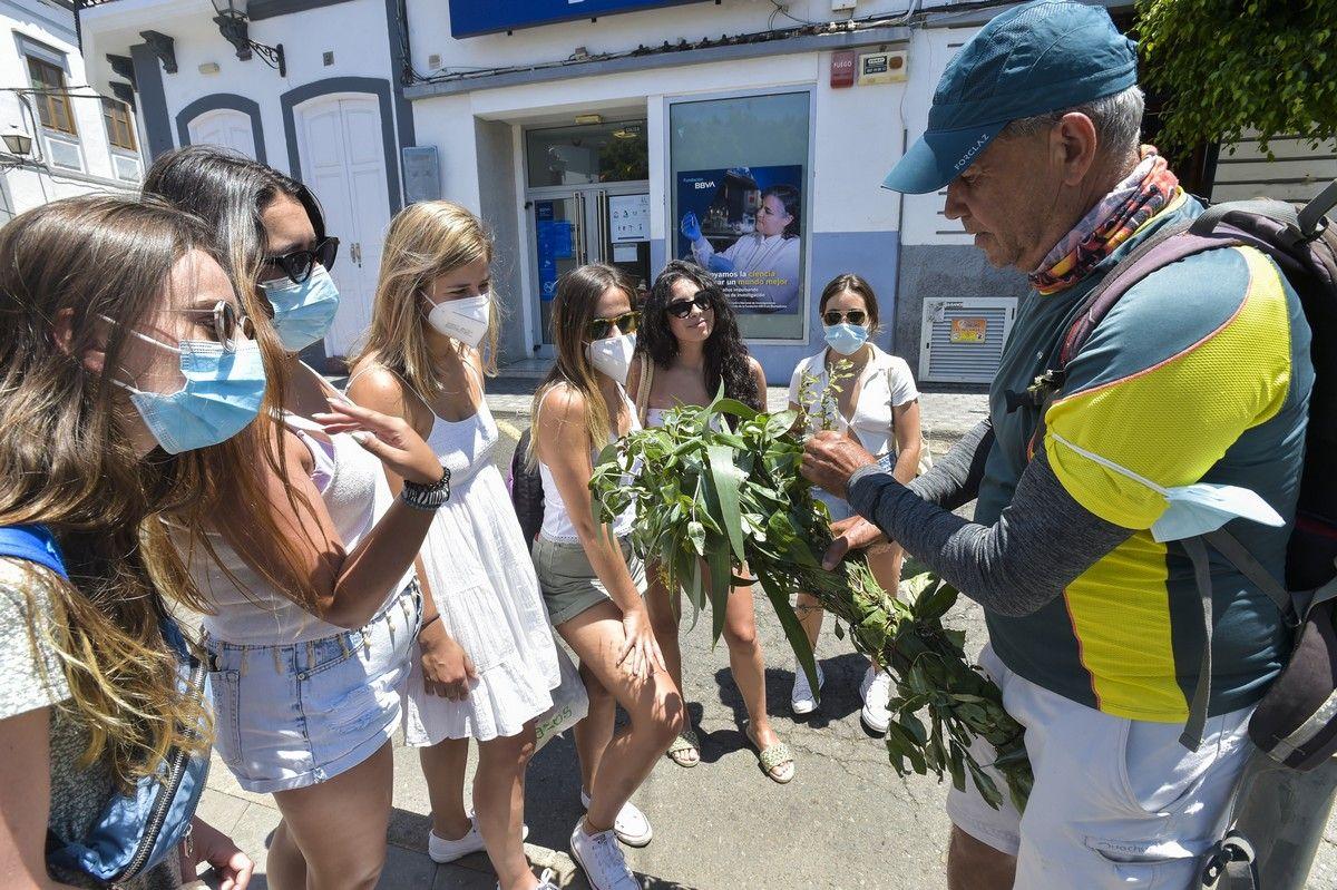 La pandemia impide la Fiesta de la Rama en Agaete