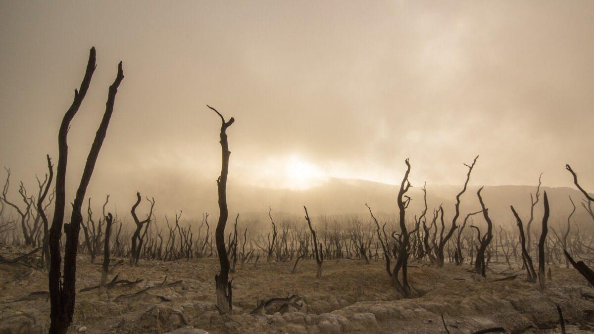 La temperatura mundial se desboca y puede superar el límite de 1,5º en cinco años