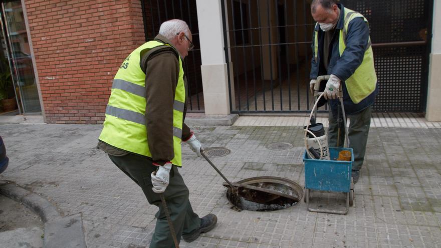 Sadeco refuerza las revisiones de alcantarillado para localizar focos de ratas y cucarachas