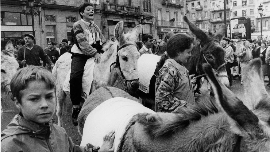 Un pleno de burros para enterrar el 'Scalextric' de Vigo