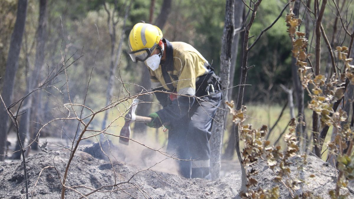 Un forestal remenant la terra cremada a Ventalló.