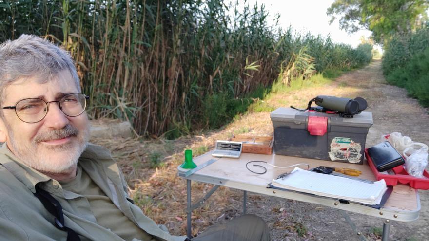 La pólvora de las fiestas merma la población de gorriones en el interior de la provincia de Alicante