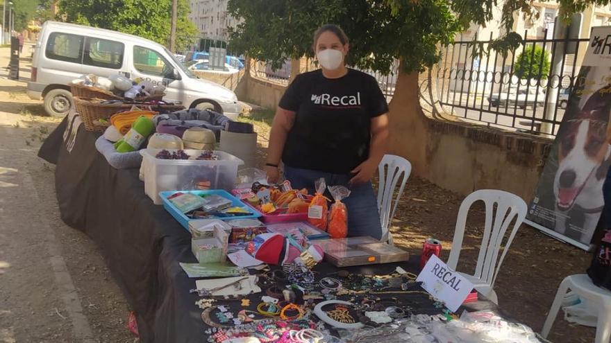 45.000 euros en ayudas dirigidas a entidades sin ánimo de lucro en Almendralejo