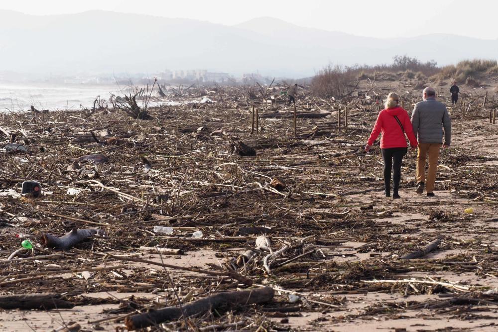 Els efectes de l'últim dia de temporal al Baix Ter