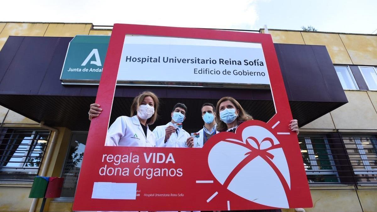 El hospital Reina Sofía realizó 185 trasplantes en 2020, un 14% menos por la pandemia