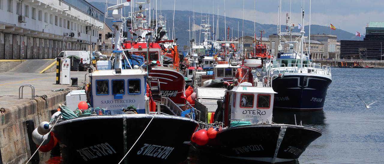 Barcos atracados en el puerto pesquero de O Berbés
