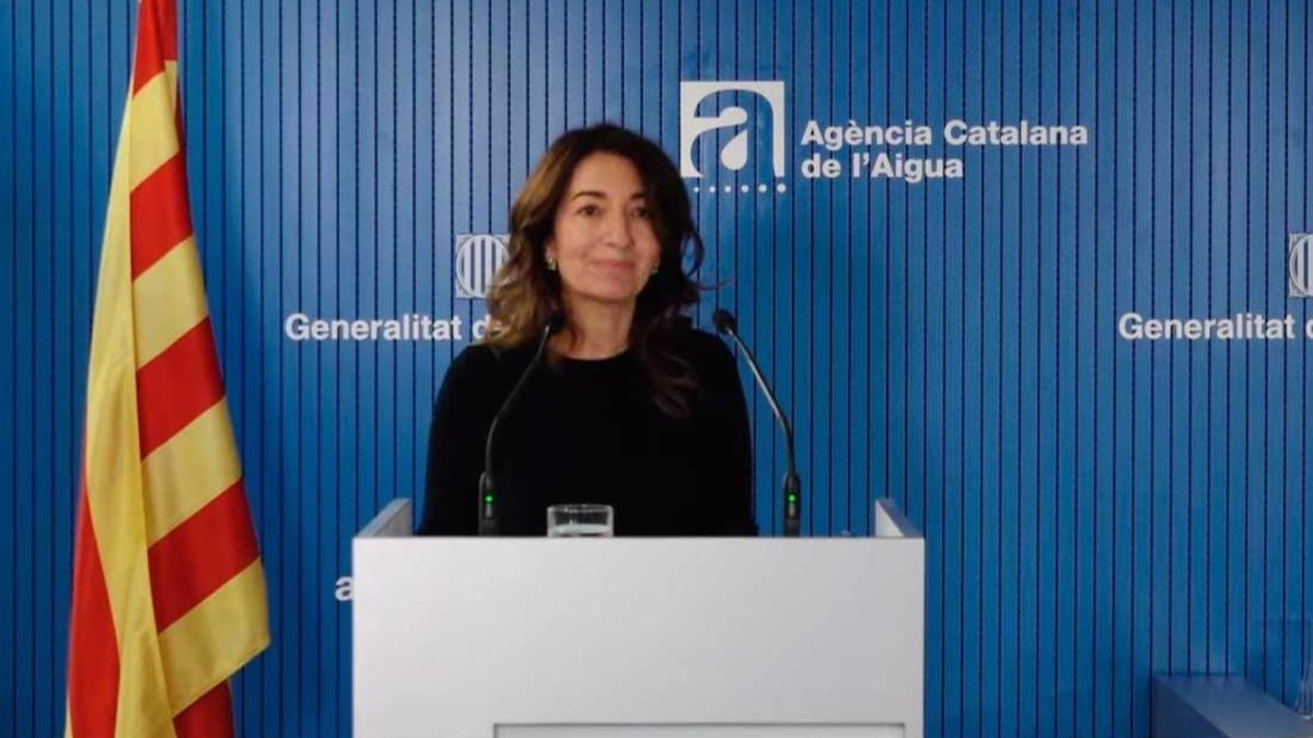 Secretària de Medi Ambient i Sostenibilitat, Marta Subirà, en un acte telemàtic