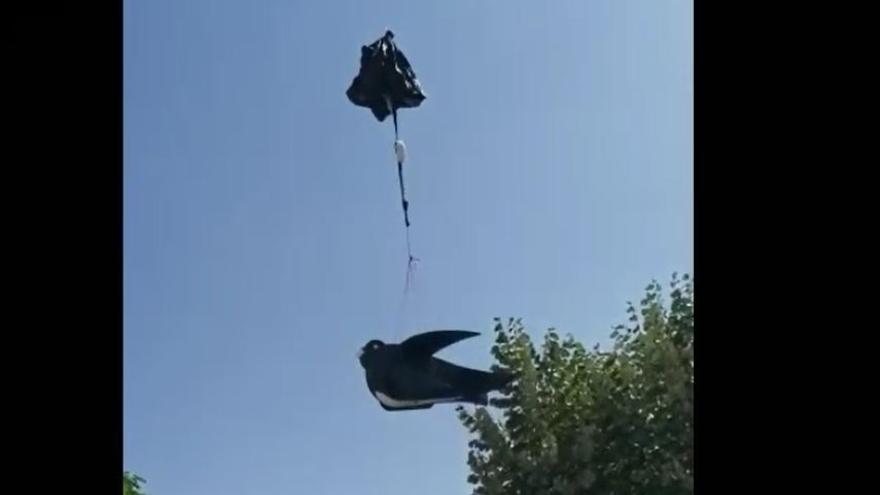 La Gala de Queralt enlaira un globus ple de petites orenetes per les víctimes de la covid