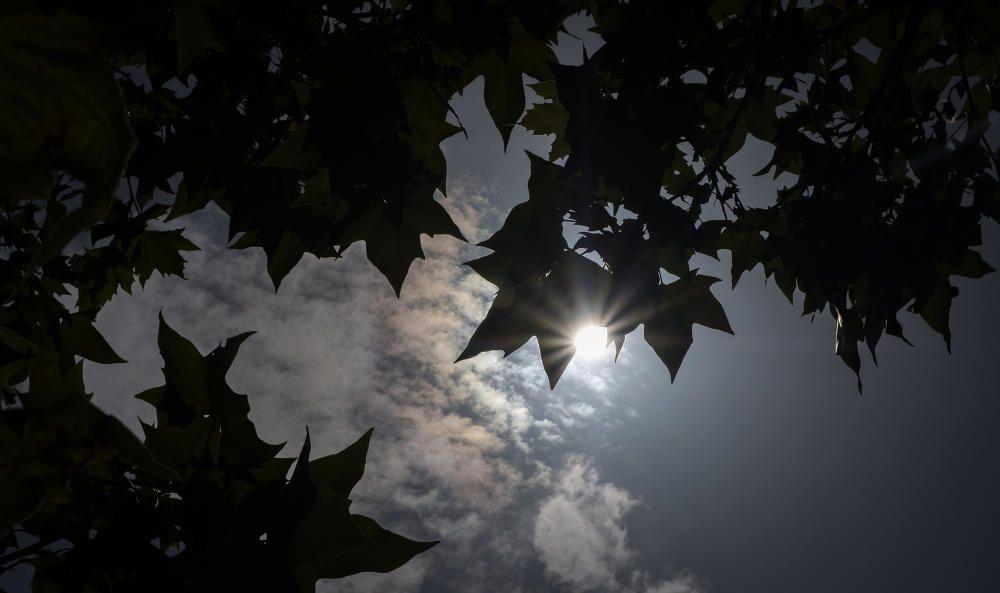Un contrallum estiuenc i un raig de sol a ple migdia amb la calor com a protagonista.