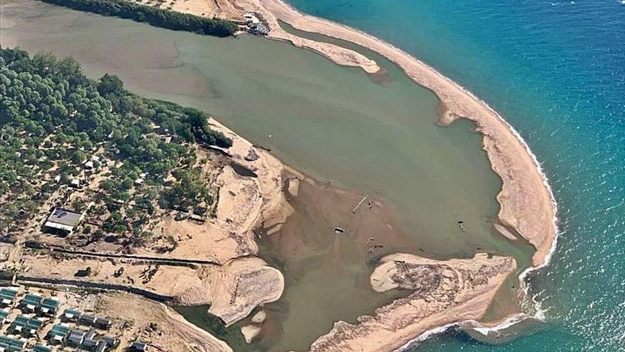 Blanes reclama més protecció per al delta de la Tordera per l'augment d'aus