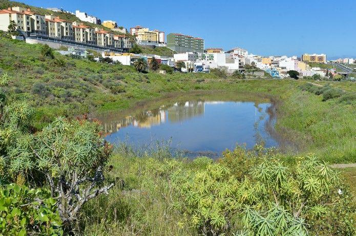 Humedal de la Charca de San Lorenzo