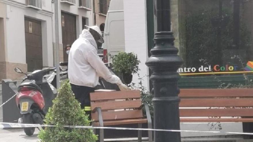 Un apicultor retirando el enjambre en Antequera.