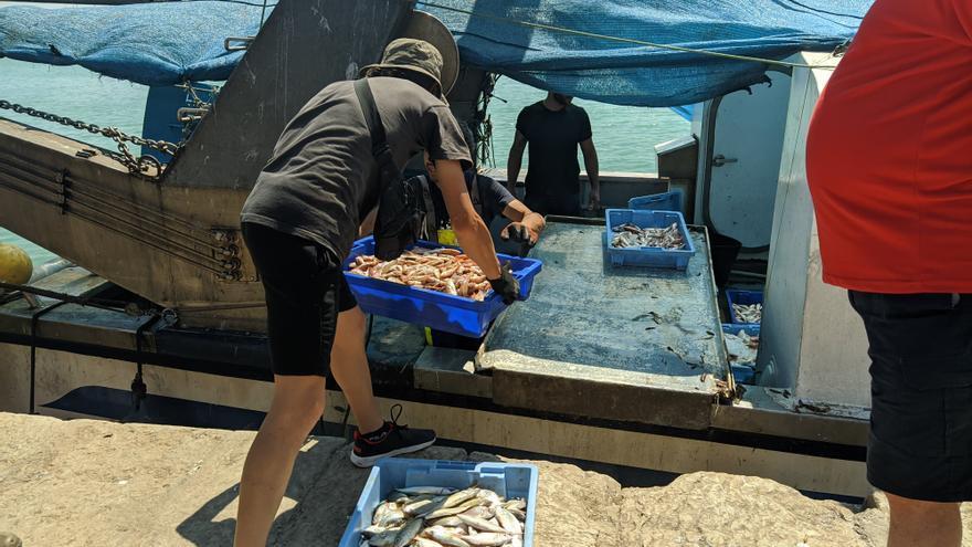La pesca de arrastre de Burriana alerta que no sobrevivirá sin ayudas