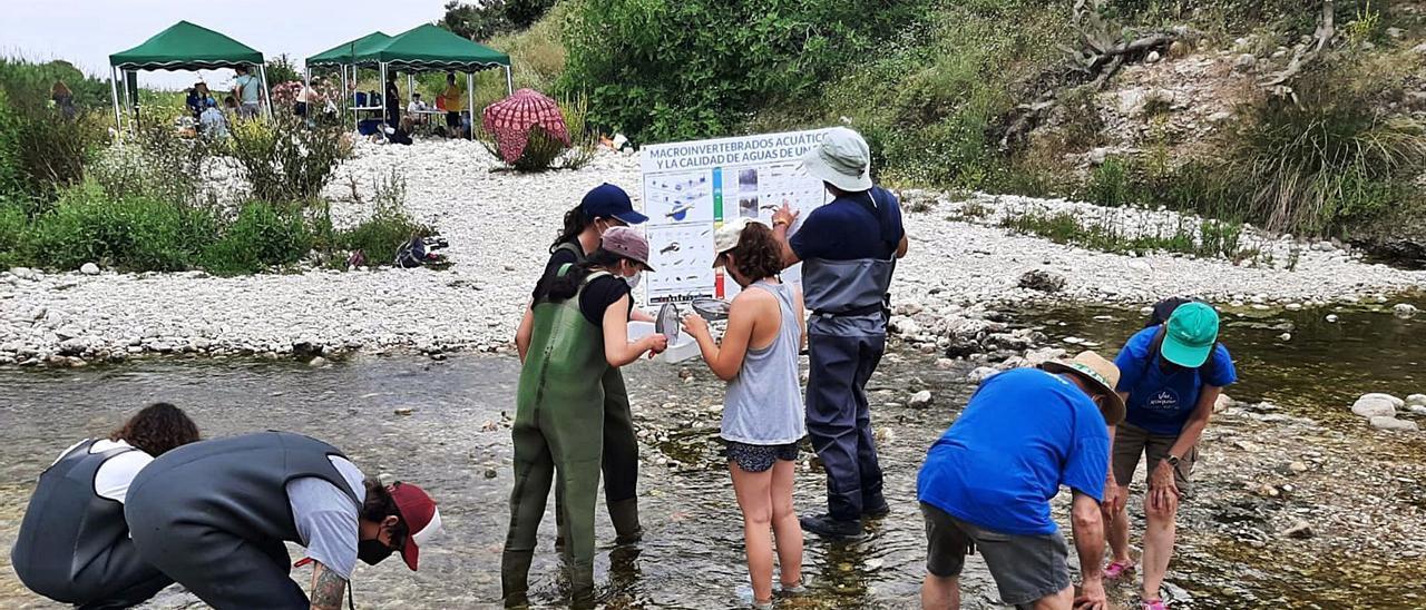 En las dos imágenes,  participantes en la jornada,  ayer en Potries.  pere merino