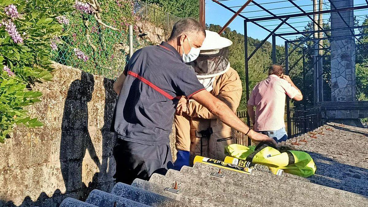 Trabajos para la retirada de un nido en la parroquia cruceña de Camanzo.