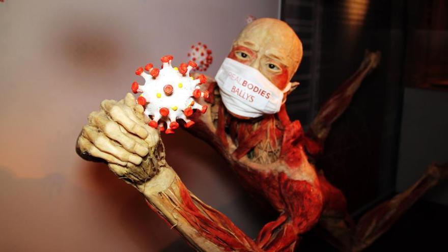 Los efectos del coronavirus llegan a la muestra 'Bodies'