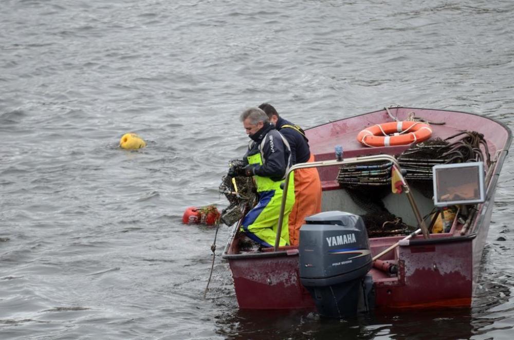 Pesca de lamprea en el río Ulla