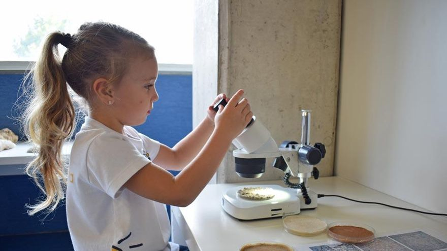 UManresa i museus amb espais de ciència per a la infància conviden futurs tècnics en Educació Infantil a viure l'aprenentatge científic en primera persona